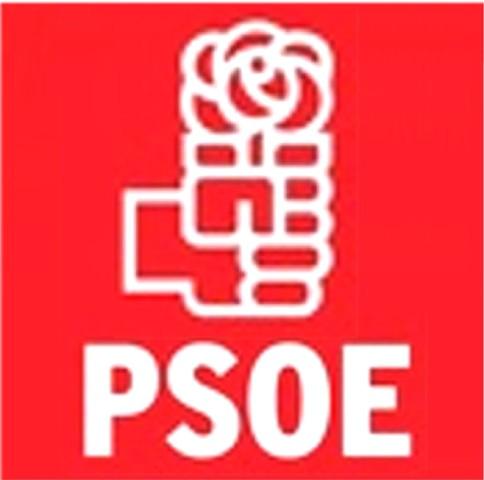 USTED ESTÁ ACREDITADO.Voto-bomba en el PSOE.
